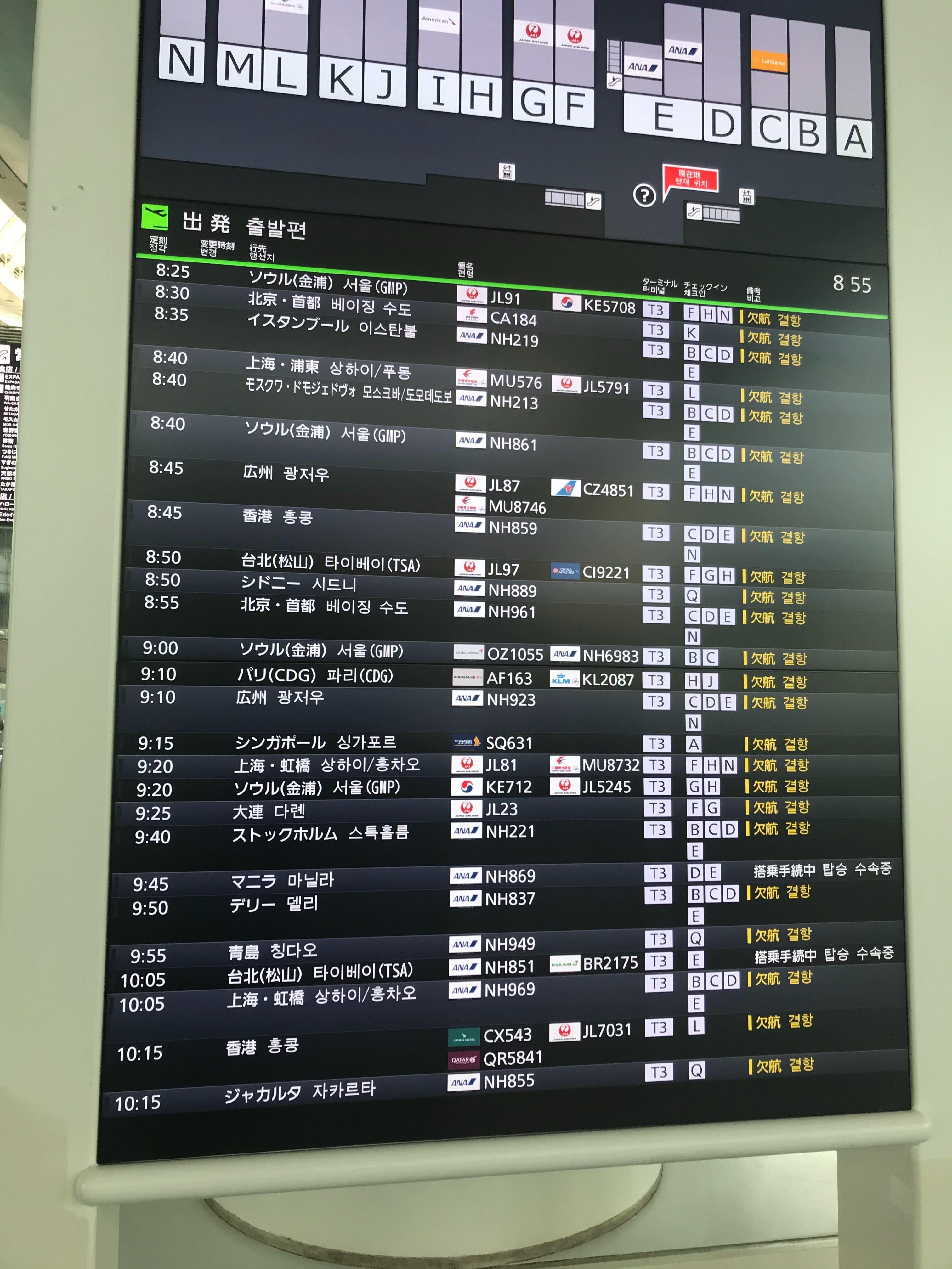 【体験談】日本からイギリス・ロンドンへの入国制限・入国情報【2020年8月情報】