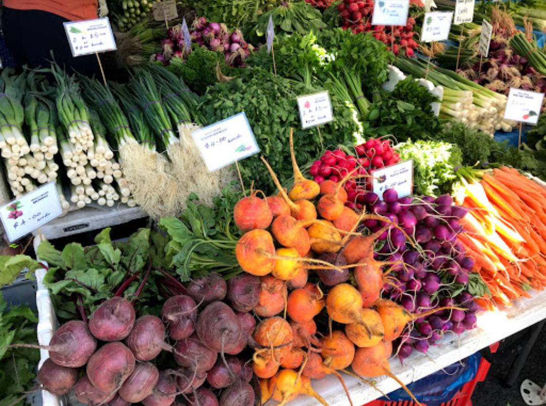 サラマンカマーケット | タスマニア在住Nanaさんのおすすめショッピング・買物スポット