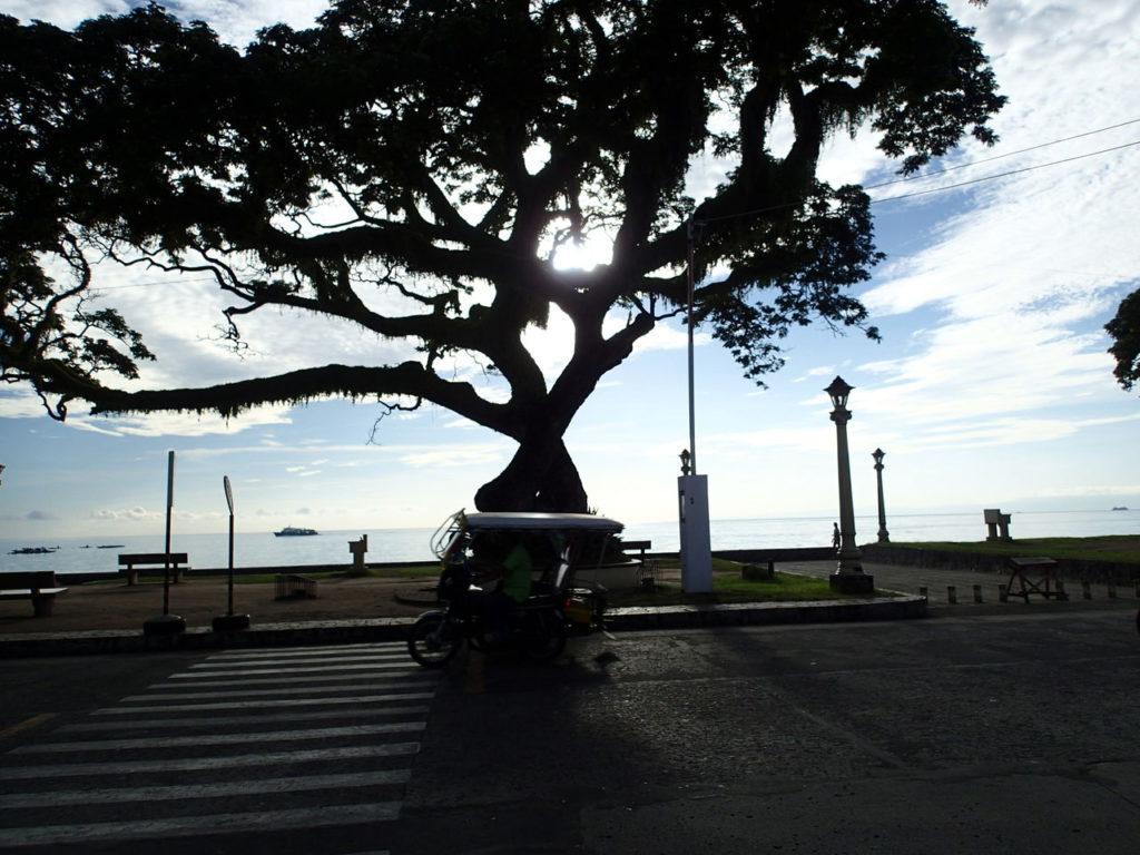 フィリピンネグロス島ドゥマゲッティ市 | ドゥマゲテ(ネグロス島)在住ユイさんのおすすめエリア・地区