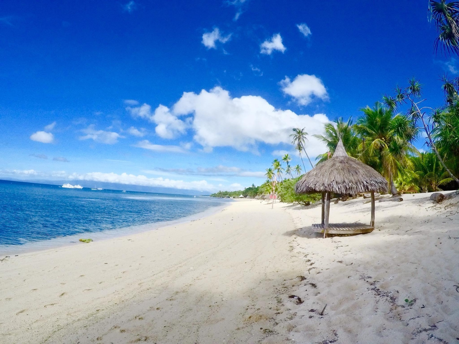セブ島 | セブ島在住並木さんのおすすめエリア・地区