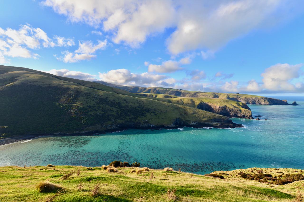 クライストチャーチ発;誰も知らないバンクス半島の秘境の絶景へ | クライストチャーチ在住Mitchy@New Zealandさんのおすすめ1日観光モデルコース&プラン