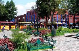 コヨアカン市場 | メキシコシティ在住ショウさんのおすすめショッピング・買物スポット