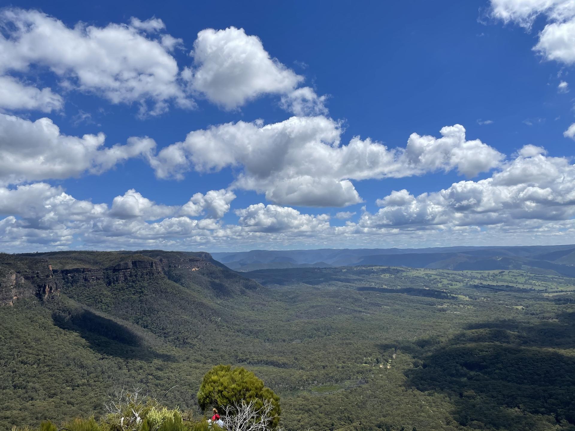 ブルーマウンテンズ | シドニー在住Lioさんのおすすめ観光スポット