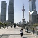 シャンハイ(上海)在住のロコ、とこさん