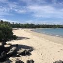 ハワイ島在住のロコ、スーさん