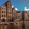 アムステルダム在住のロコ、欧州ビジネス対応さん