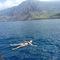 オアフ島(ハワイ)在住のロコ、クミンさん