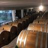 トレント在住のロコ、イタリア自然派ワインガイドさん