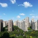 シャンハイ(上海)在住のロコ、チビコさん