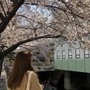 プサン(釜山)在住のロコ、maimaiさん