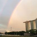 シンガポール在住のロコ、Kikiraraさん
