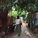 バンコク在住のロコ、さかなさん
