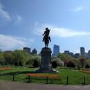 ボストン在住のロコ、ゆきさん