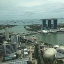 シンガポール在住のロコ、Momoさん