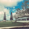 オアフ島(ハワイ)在住のロコ、アキさん